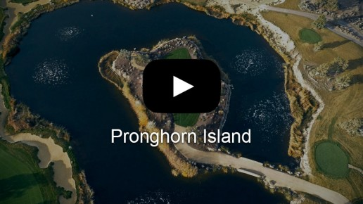 Pronghorn Island | Flick Five Films