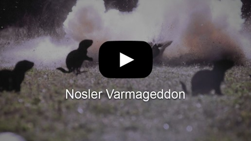 Nosler Varmageddon | Flick Five Films