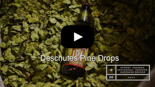 Deschutes Pine Drops Video | Flick Five Films
